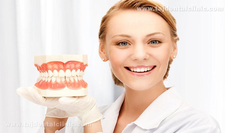 دندان و انواع دندان